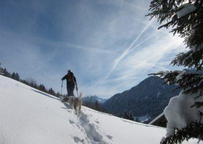 Alke sneeuwwandelend met Loebas