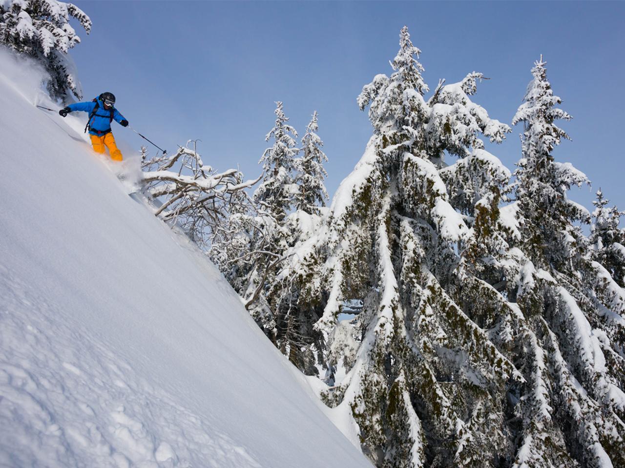 Activiteiten - Freeride ski PDS