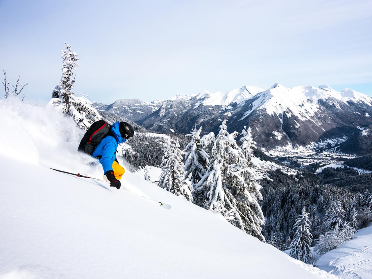 Activiteiten - Freeride ski