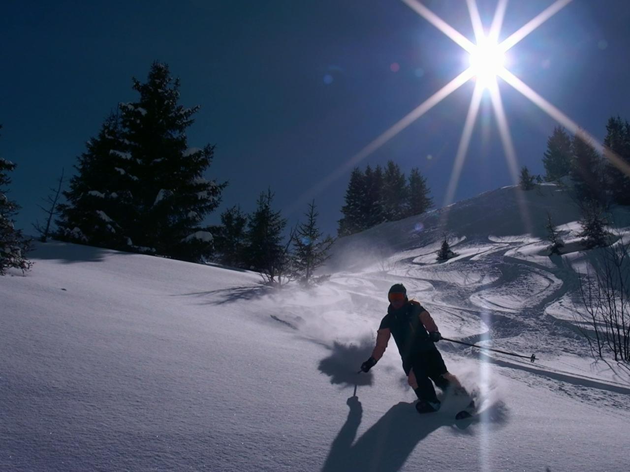 Activiteiten - Ski PDS Champoussin poeder