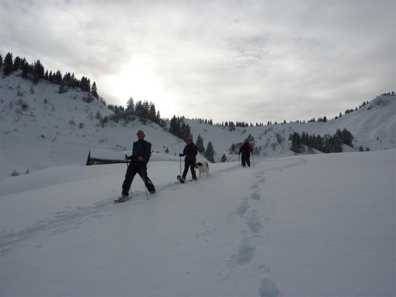 Activiteiten - Sneeuwwandelen Chalet de Lens