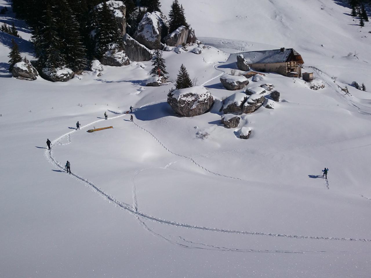 Activiteiten - Sneeuwwandelen Chalet de Mens