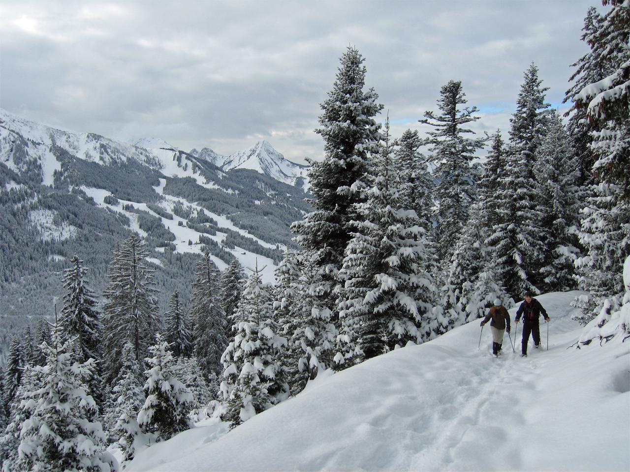 Activiteiten - Sneeuwwandelen boven Pantiaz