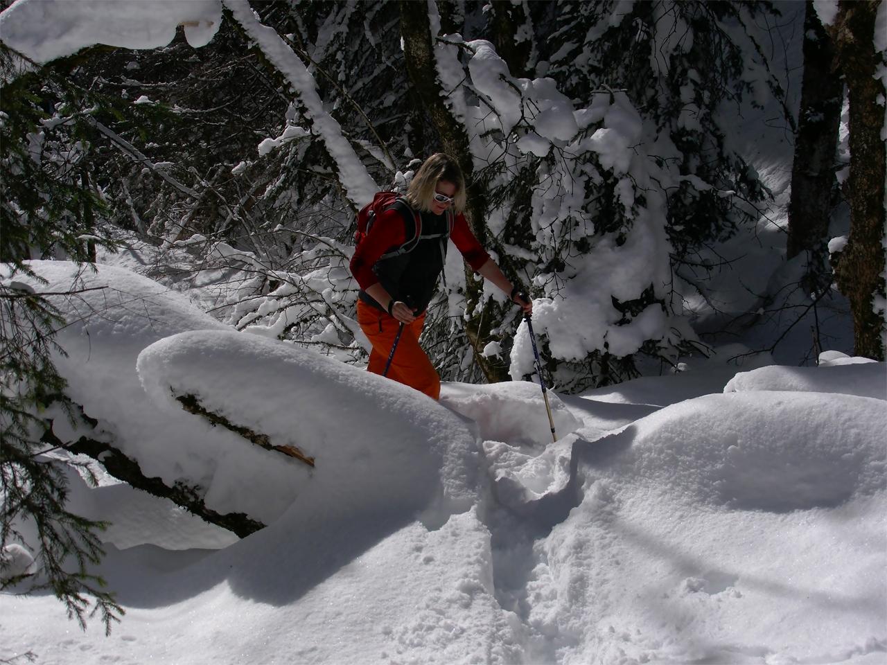 Activiteiten - Sneeuwwandelen diepe sneeuw