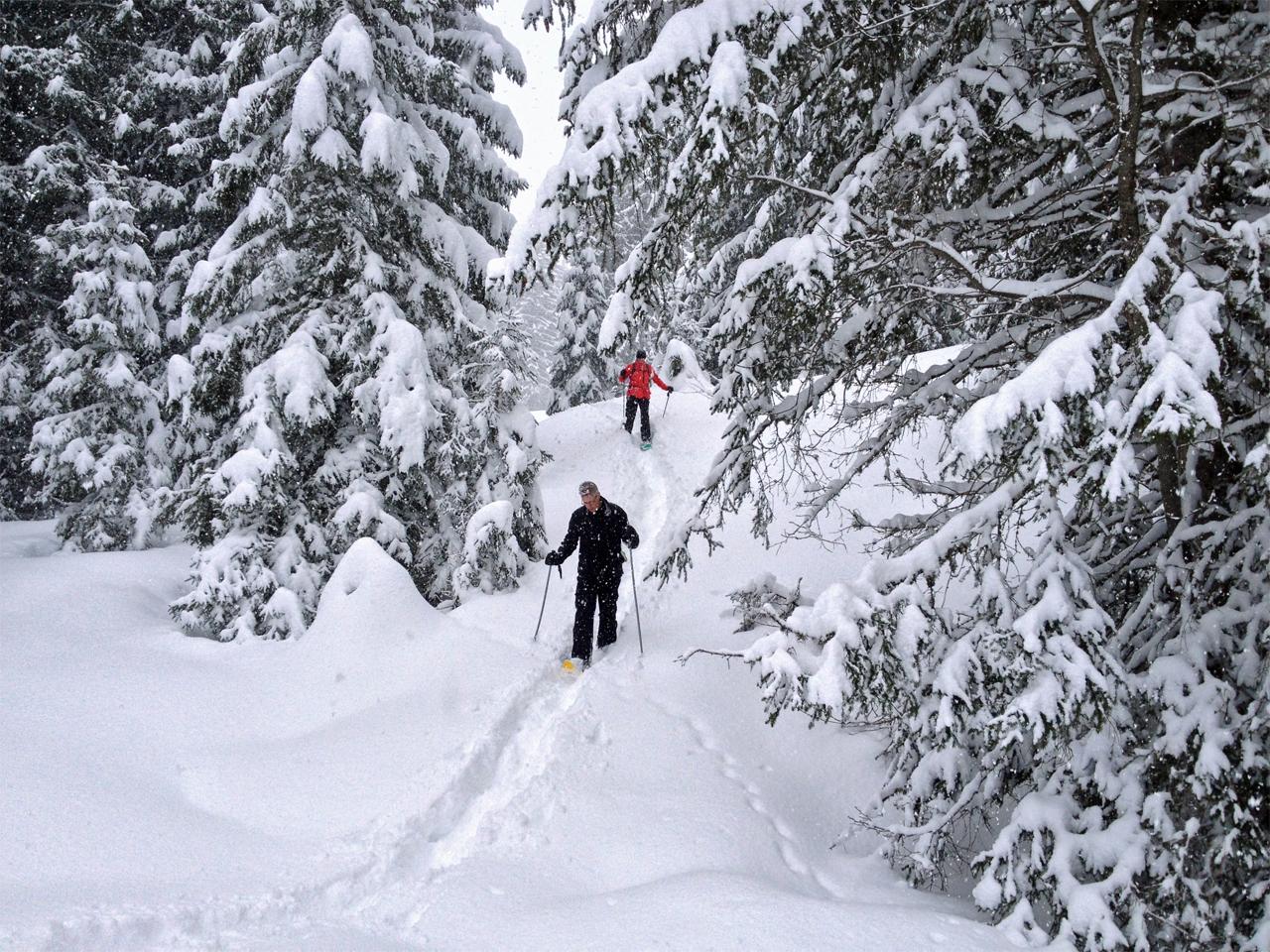 Activiteiten - Sneeuwwandelen met gasten