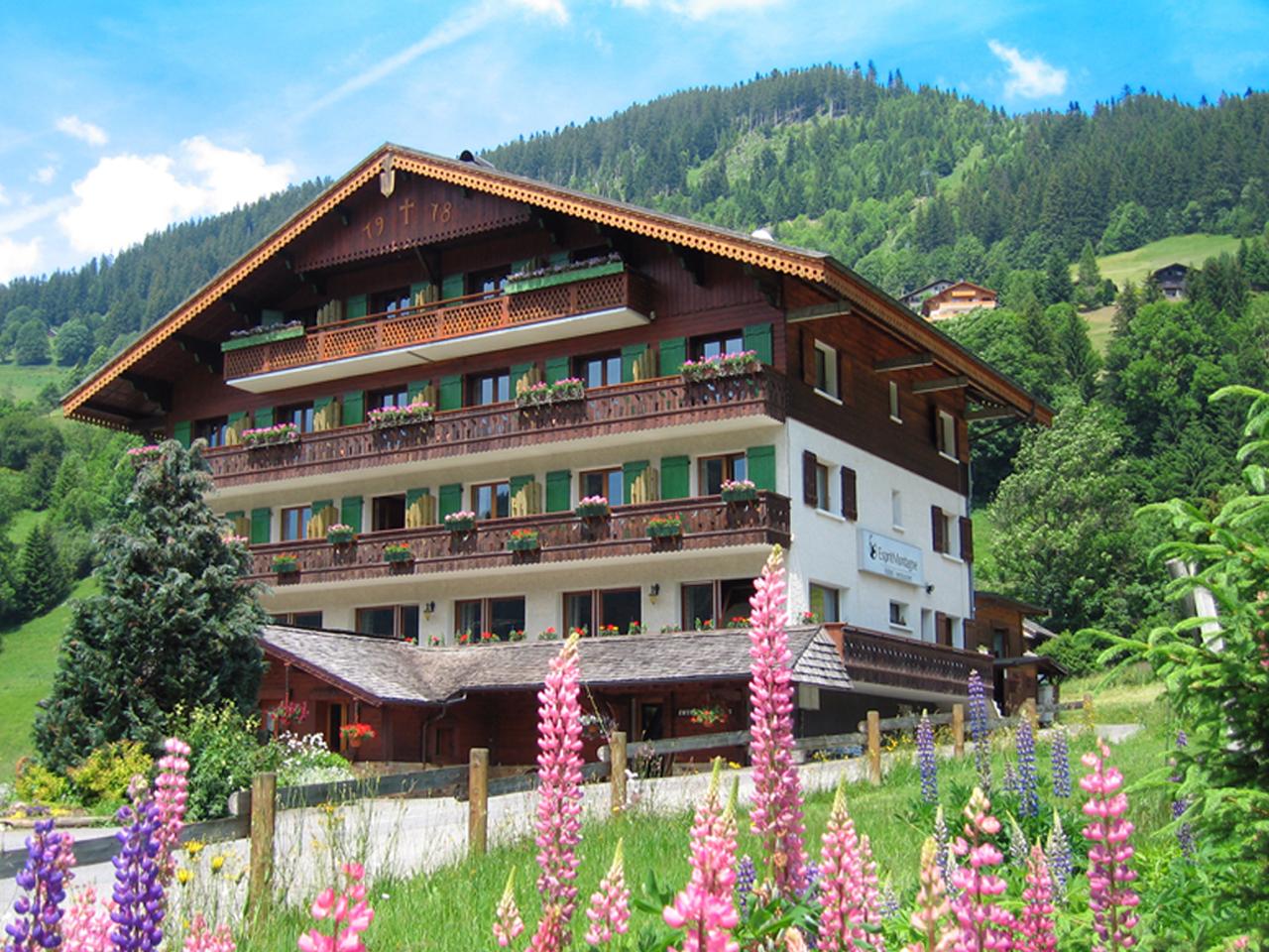 Hotel - Hotel in zomer