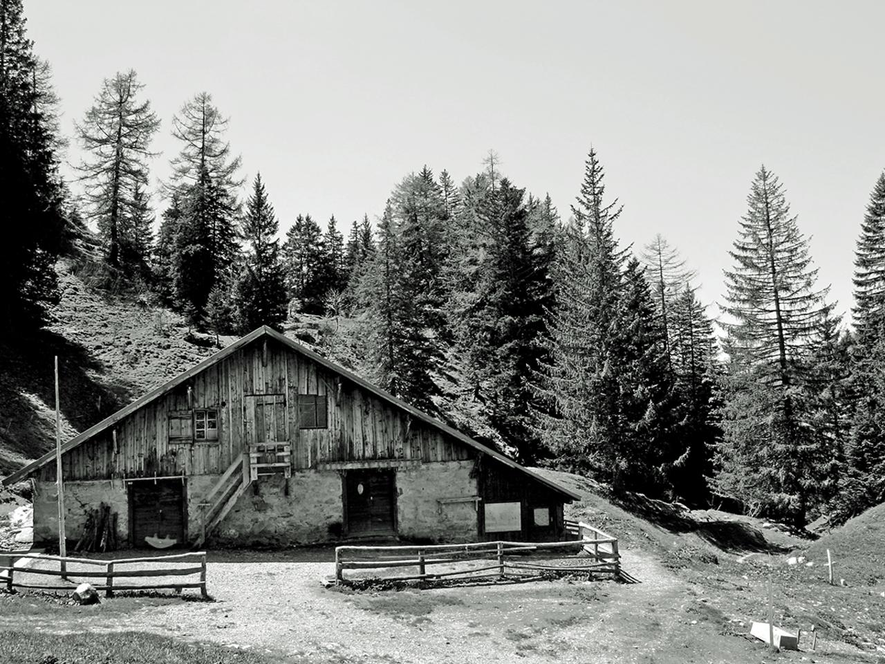 Omgeving - Oude bergboerderij