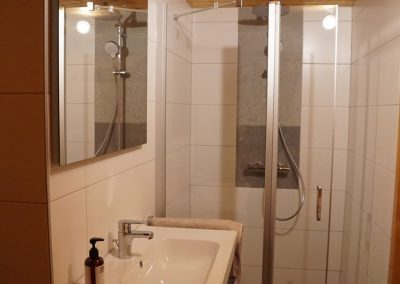 Renovatie sauna en toilet 2