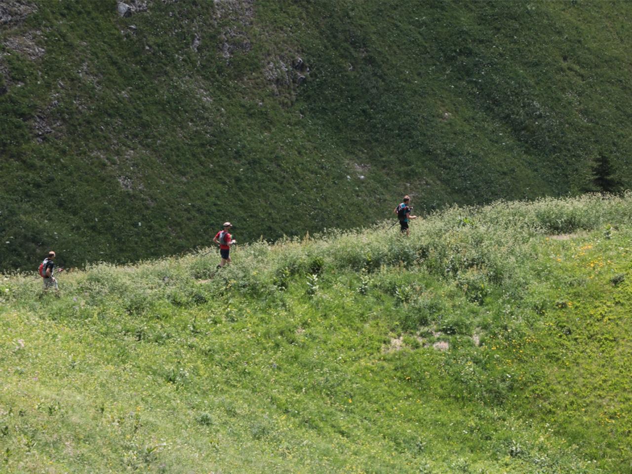 Trailrunning - 3 runners